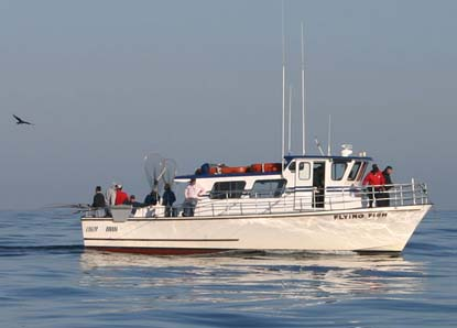 San francisco fishing charter boats san francisco for Salmon fishing bay area