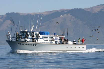 San francisco fishing charter boats san francisco for San francisco fishing charters