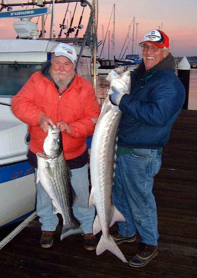 Fishing for stripers striped bass fishing guides and for San francisco bay fishing charters