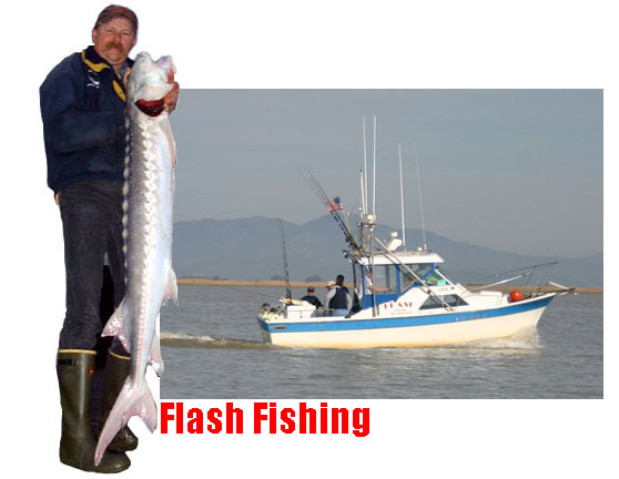 Sturgeon guides and charters san francisco bay area for San francisco bay fishing