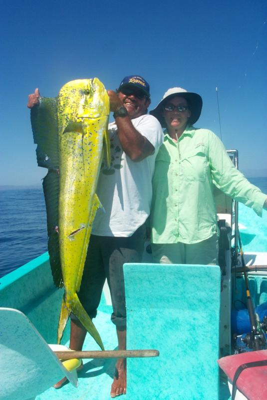 Dorado - Dorado photo courtesy of the Fishermen's Fleet.  -SportfishWorld &copy Copyright 2003 All rights reserved
