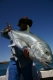 SPORTFISHWORLD FISHING PHOTO   AUSTRALIA   FISH SPECIES  Giant Trevally    A nice GT caught at a newly found 'secret' spot.  He was released after the pic, ready to fight another day! - Quinn Lawson...    SportfishWorld © 2003 Bob Fisher