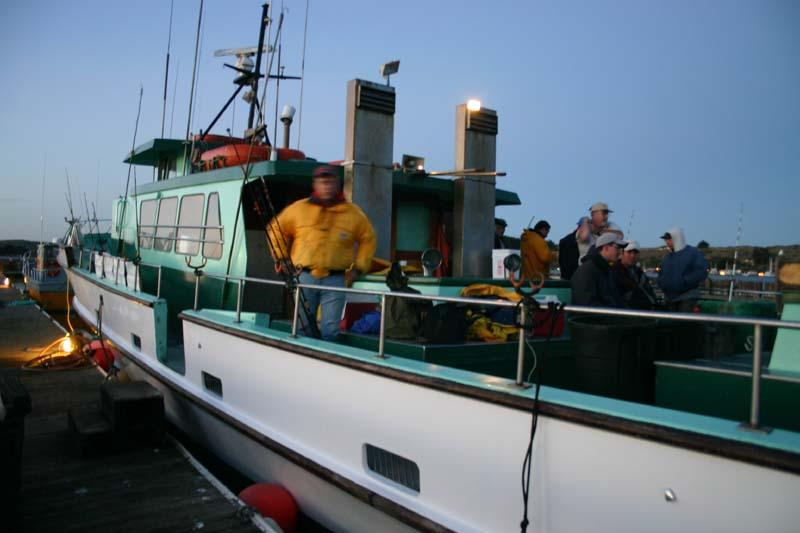 Fishing for giant humboldt squid at the cordell bank for Bodega bay fishing charters