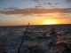 Fishing in Exmouth:  Australian Panorama: GAMEX 2006 at Exmouth in Western Australia SportfishWorld &copy Bob Fisher