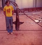 FISHING IN CARNARVON Fishing Photos Grey Nurse Shark Bob Fisher with a Grey Nurse Shark caught fishing from the NorWest Whaling Jetty one night in 1972. We also caught some big Tailor. This was part of an epic trip with three fishos and their gear in a 4 cylinder, 2 door Torana from Perth to Cape Cuvier. We stopped and fished at Geraldton on the way. That's where I got the groovy T-Shirt. Ken Maclean took the photo.    Bob Fisher's SportfishWorld ©
