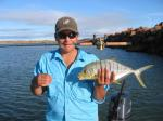 Trevally, Golden: A little Golden Trevally by Beau. Photo by Luke. Beau Cartledge's fishing photos. &COPY SportfishWorld