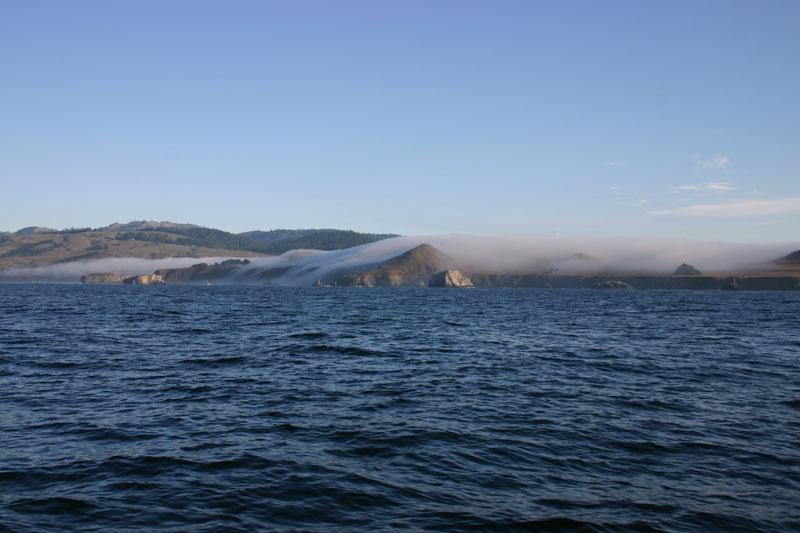 Fishing for rockfish and dungeness crab at bodega bay in for Bodega bay fishing reports