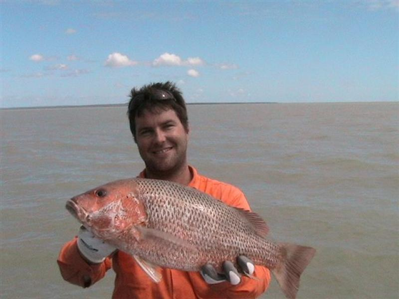 Fishing the Northern Territory, Kakadu,  Fishing Photo, Dean Campbell with a tasty Golden Snapper from the South Alligator estuary..