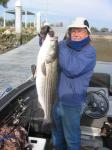 Striped Bass: Dale Parker with a Napa River Striper (17.1lbs caught elsewhere and released at the dock)February 2007 Photo submitted by George Carl, Outdoor Columnist for the Napa Valley Register, Napa California.. George Carl's fishing photos. &COPY SportfishWorld