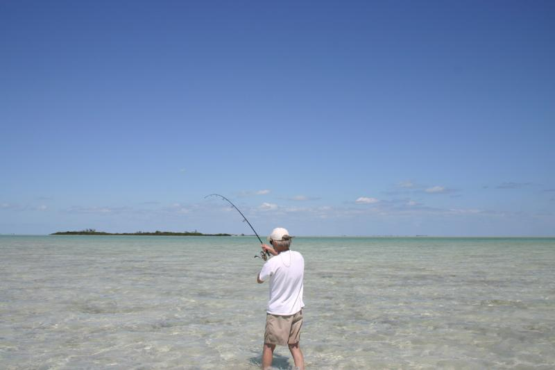 WORLDWIDE SPORTFISHING PHOTOS, Bahamas,   Bonefish, SportfishWorld's © Bob Fisher fighting a Bonefish on light spinning tackle off North Andros Island. Photo by resident Bonefish Guide Franklin Russell.