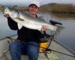 STRIPED BASS Fishing Photos! Fishing in USA for  STRIPED BASS &COPY SportfishWorld