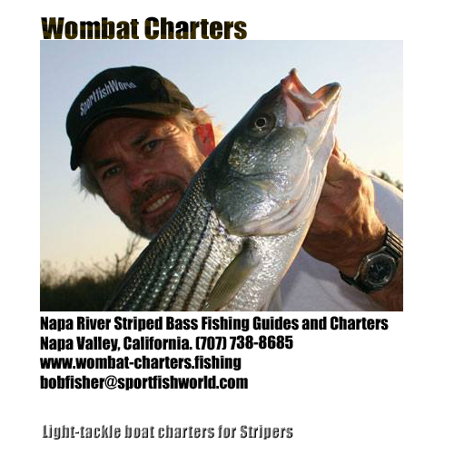 Fishing charters fishing guides fishing lodges fishing for Bodega bay fishing charters